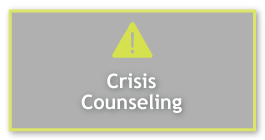 Crisis/Emergency Counseling