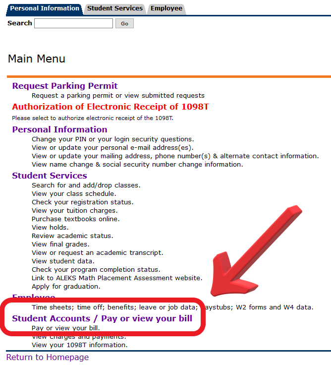 Click the Student Accounts / Pay or view your bill link